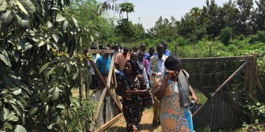 Mixa Farm site visits